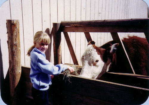 Erica and Blossom the cow